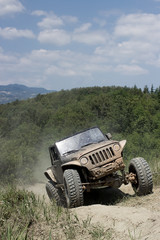 offroad on wild track