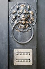 The door handle - lion's head