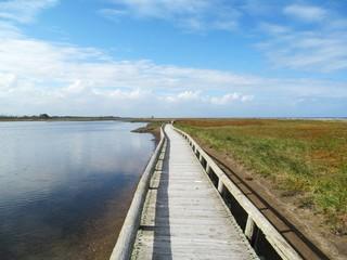 風連湖と散策路