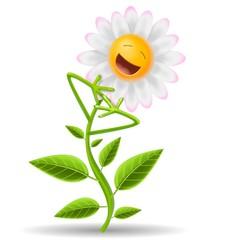 fiore allegro