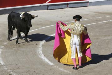 torero en plaza de toros