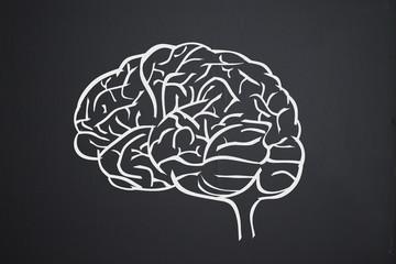 Gehirn auf Tafel