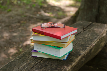 Four books and glasses on a wooden bench in the park