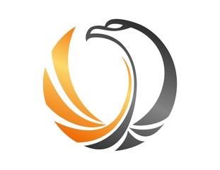 hawk logo,bird,eagle falcon,gold media modern business icon