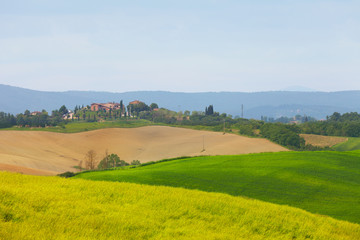 Poster Hill Tuscan rural landscape in the morning