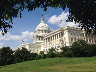 US Capitol in Summer