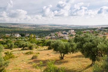 Gardens Of Israel