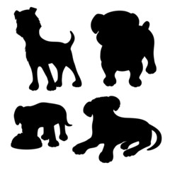 Vector set. Dogs.