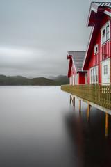 Garden Poster Scandinavia Colorful Buildings