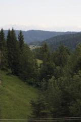 Fototapeten Wald Widok na doline potoku Jamne i szczyty Tatr, Ochotnica Górna, PL