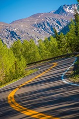 Wall Mural - Curved Colorado Mountain Road