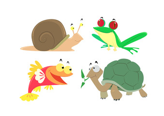 vector animals set