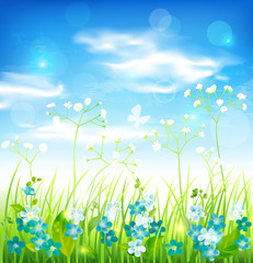 Background with grass and flowers. Vector