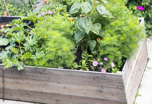 Hochbeet Mit Blumen Stockfotos Und Lizenzfreie Bilder Auf Fotolia