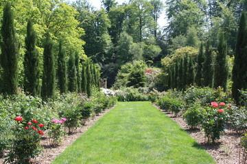 jardin de verdure