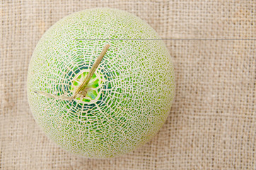 Big fresh Melon