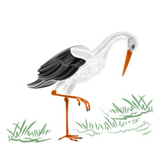 White Stork vector illustration without gradients