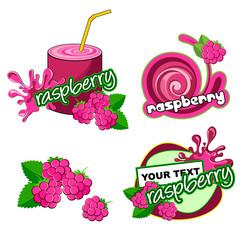 Vector raspberry.