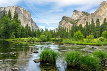 Wall Mural - Yosemite Nationa Park