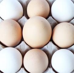 Un uovo grande visto dall'alto, in mezzo ad altre uova