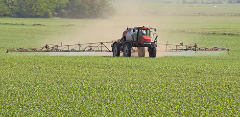 Spraying a Corn Field
