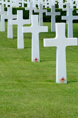US military grave with poppy of remembrance World War Two