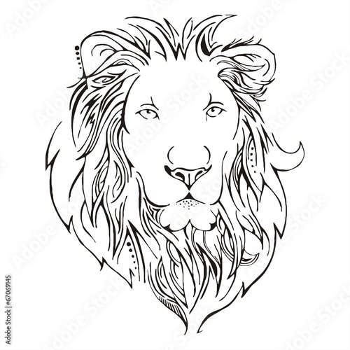 Line Drawing Lion Face : Quot lion head sketch vector stock image and royalty free