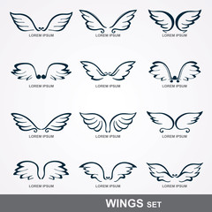 wings collection
