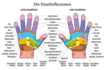 Hand reflexology chart description white german