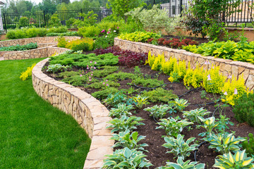 Landscape design in home garden, landscaping of residential backyard or yard