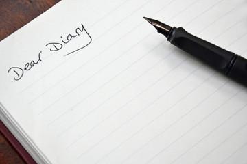 Diary entry