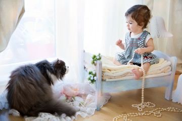adorable baby sitting on the little bed and playing with cat