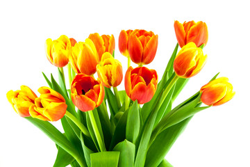 bouquet of yellow and orange tulips isolated