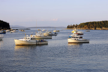 Lobster Boats in Harbor