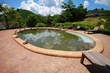 pool and nature outdoor design