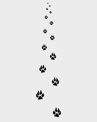Trail forward of paw prints, vector illustration