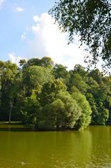 Grüne Sommerlandschaft mit Teich