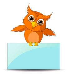 Cute Owl with Board