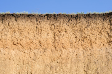Cut of soil with different layers, grass and sky