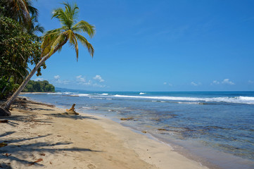 Pristine Caribbean beach in Costa Rica