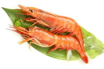 赤海老 アルゼンチン赤海老 食材