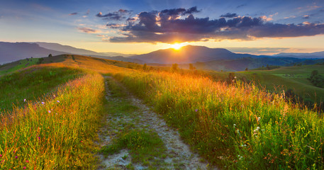 Wall Mural - Panorama of the colorful summer evening  in the mountains.