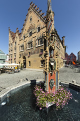 Wall Mural - Rathaus Ulm mit Brunnen