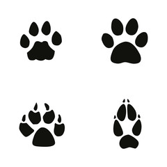 cat, jaguar, dog, fox footprint