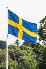 Swedish flag waving in forest