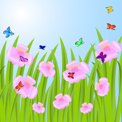 background with pink flowers and butterflies