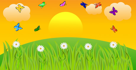 summer landscape at sunset with butterflies and flowers