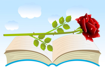 red rose on an open book