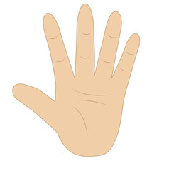 hand, showing number five on white background