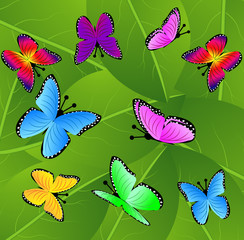 background  with green leaves and butterflies